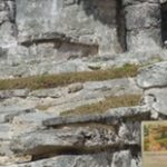 Graisse-Graissou visite des ruines Maya au Mexique en compagnie de Laurier et Aline:)